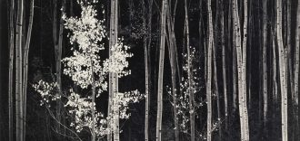 ANSELM ADAMS Photographica FineArts Gallery (PARTICOLARE)