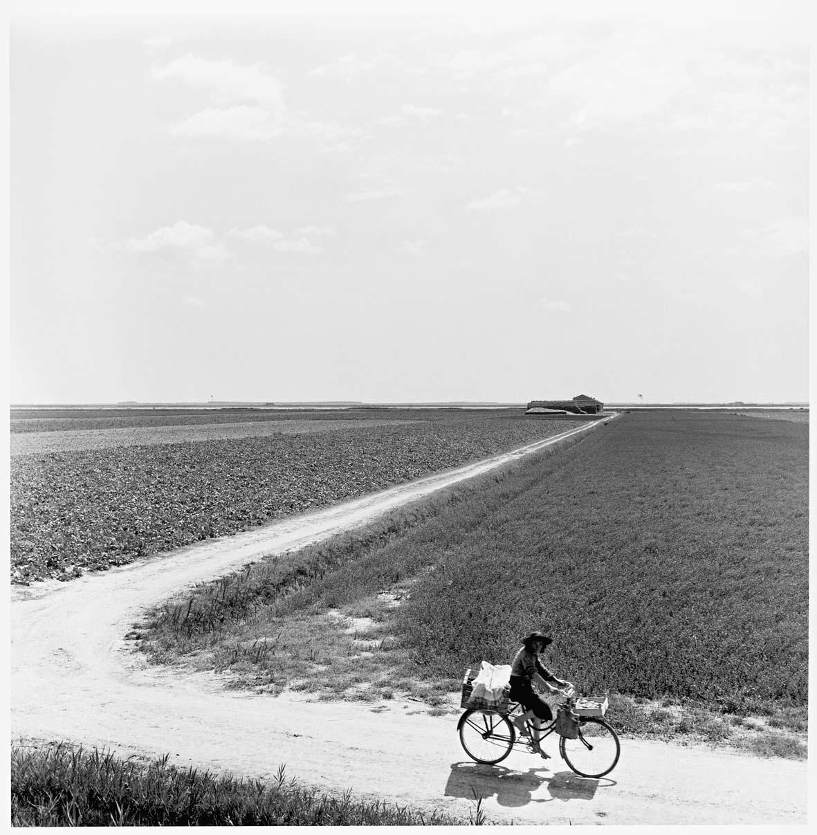 Delta del Po (D.110). Valle Pega, venditrice ambulante, 1954